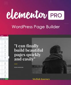Elementor-PRO-WordPress-Page-Builder-1